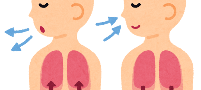 アンヴレ通信 第51号|心と体をゆるめる呼吸法